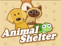 Jogo Animal Shelter, você é uma pessoa que resolveu criar um abrigo de animais, sua missão é cuidar todos com muita atenção, amor e carinho, preste muita atenção nos seus objetivos, entre eles as necessidades que aca animal tem como: Alimentação, Higiene, sua Saúde, entre outros.