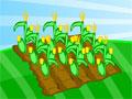 Jogo - Farm Fun, Seja um bom fazendeiro e cuide bem de sua planta��o que aos poucos vai se tornar uma bela e grandiosa fazenda, utilize todas as ferramentas corretas no momento exato e ganhe muito dinheiro.