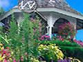 Flower Garden - Observe atentamente o cenário de flores. Encontre o alfabeto que está oculto no jardim, seja ágil para não perder tempo.