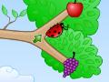 Jogo Fruity Bugs, Cada joaninha precisa do seu alimento exclusivo, para isso você precisa conduzir todas até a fruta que corresponde a sua cor, controle todas as setas que estão espalhadas nas arvores para que os insetos consiga chegar até a sua comida.