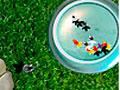 Goldfish Connect - Coloque os peixinhos de volta no aquário. Clique sobre os que são idênticos e estão soltos nas pontas para retirar do lago, seja ágil para marcar muitos pontos.