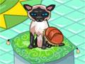 Kitten Grooming - Em seu pet shop quem manda s�o seus clientes. Pegue os bichinhos de estima��o e os trates com reis, de banho, escove os pelos e os dentes deixando cada um satisfeito com seus servi�os.