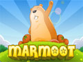Marmoot - Ajude a marmota exterminar os inimigos que estão tentando invadir o território dela. Mire e atire os explosivos  nos seus oponentes retirando alguns obstáculos e tenha muito cuidado para não atingir os seus amigos.