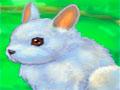My Dear Rabbit - Você tem que cuidar de lindos coelhinhos, mas não será nada facil. Comece brincando com o bichinho depois de um belo banho, seguindo passo a passo as instruções para completar sua missão.