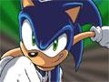 Jogo - Sonic Speed Spotter, Um game para bons observadores que sejam rápidos igual o Sonic, Sua missão é encontrar todas as diferenças que estão espalhadas em diversas imagens que tem como personagens amigos e inimigos do Sonic. divirta-se e acumule muitos pontos.