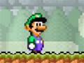Ajude Luigi em sua missão de vingança, no bom e velho estilo do Mário Bros. O jogo possui 3 fases e 3 chefes.