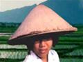 Ande pelo território inimigo e mate os vietnamitas que tentam te matar.
